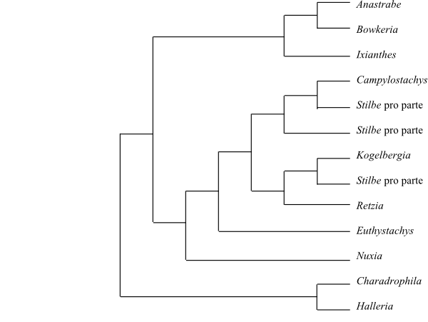 Java quellcode für das ausländische handelssysteme bild 6