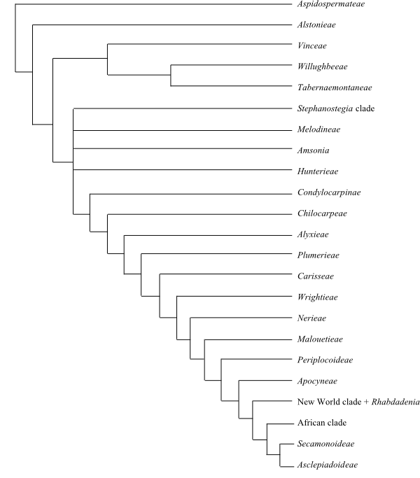 hamric und spross modell 2005